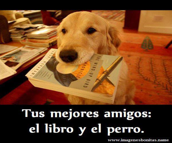 libros58